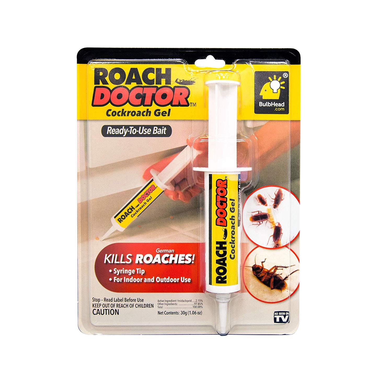 bulbhead-roach-doctor