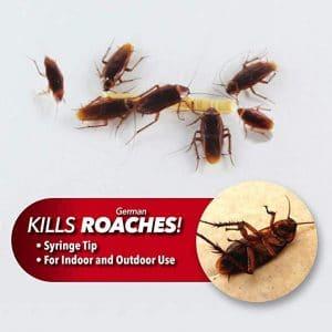 kills-roaches